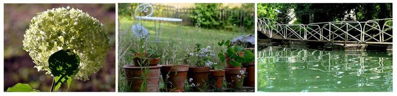 1er paragraphe-jardin-agnes-clairand