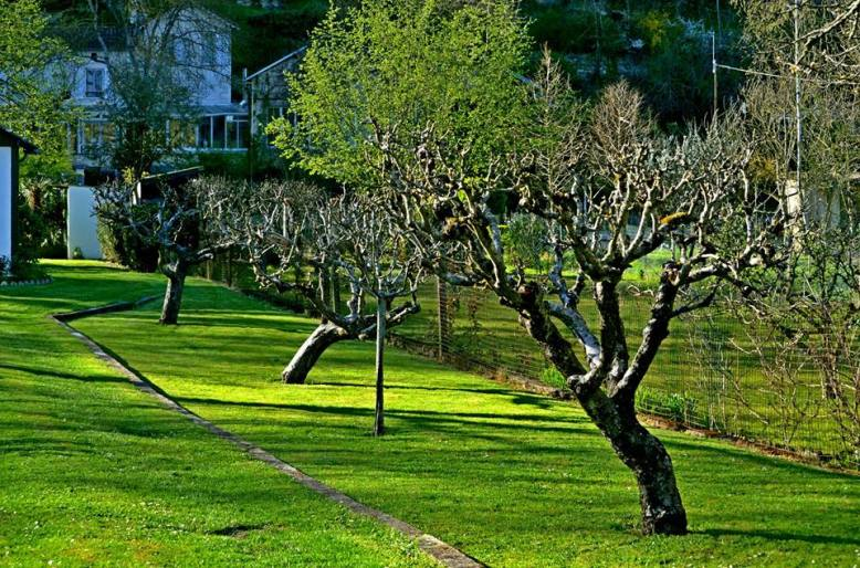 jardin-chemein-maison-agnes-clairand