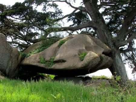 cote-de granit-rose-rochers-objets-poetiques-vue-10