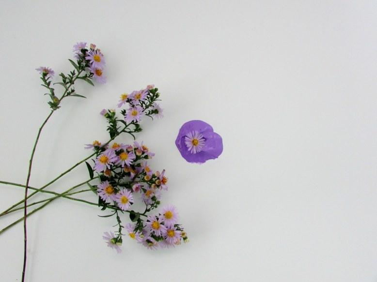 fleurs-et-couleur-violette-objets-poetiques-1