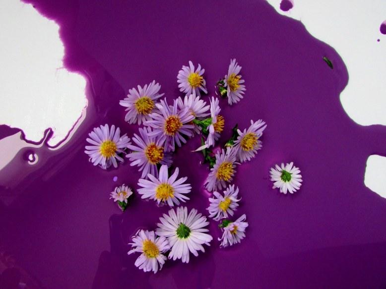 fleurs-et-couleur-violette-objets-poetiques-3