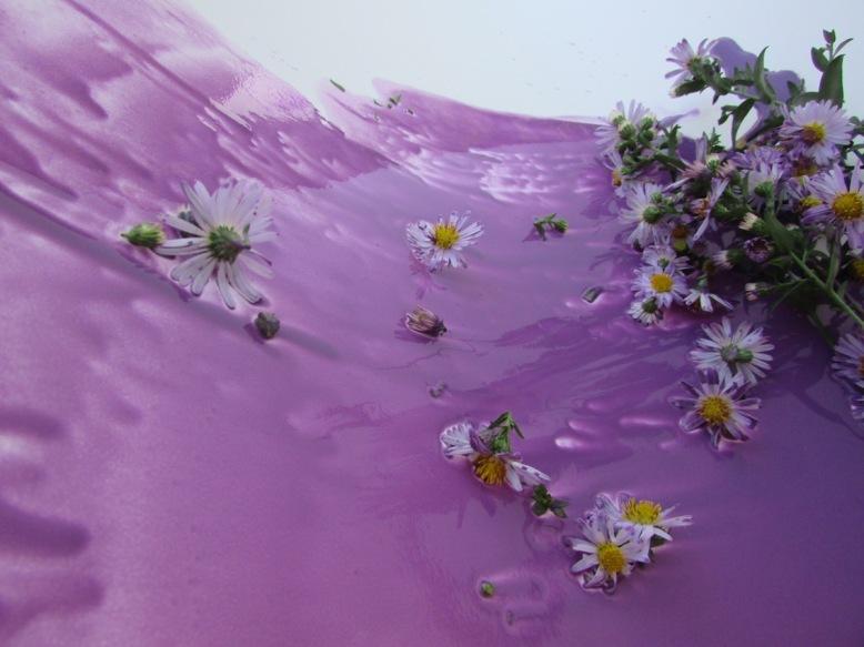 vague-violettes-objets-poetiques