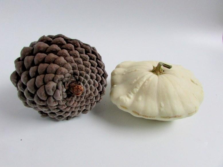 pomme-de-pin-patisson-objets-poetiques-2